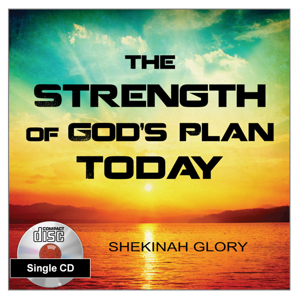 """The Strength of God's Plan Today"" Single MP3 Audio Teaching"