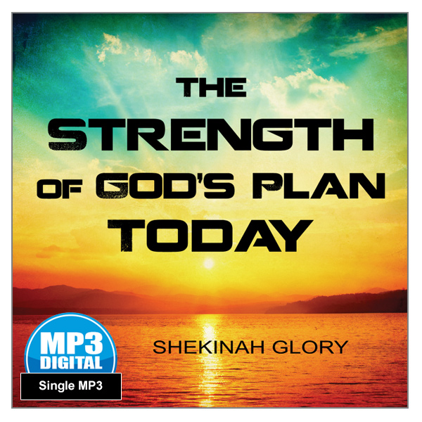 """The Strength of God's Plan Today"" MP3 Audio Teaching"